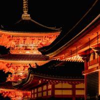 Ultimate Kyoto Visitors Guide