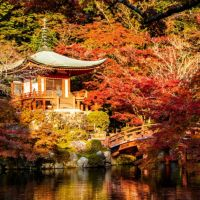 The 1-day Kyoto Itinerary for First Timers