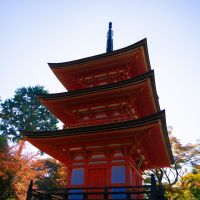 Visit Kyoto and Enjoy Amazing Kyoto Tours